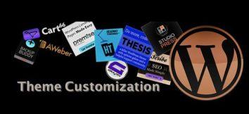 how-customised-api-can-enhance-your-themes-capability